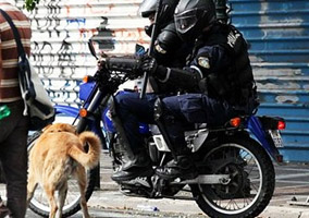 Greek Police Tried To Kill Riot Dog
